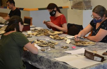 Újravizsgálják Vásárhely régészeti örökségét a Tornyaiban