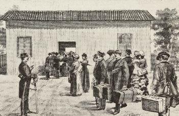 Hatástalan volt a kolera elleni magyar karantén (24.hu)